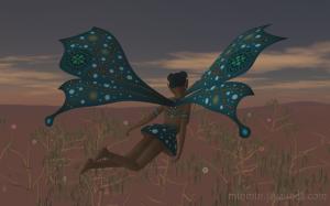 Payi Flying